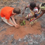 Bénin ADeD plantation 02