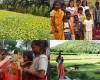 Projet familles en Inde