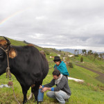 quinoa_equateur_hugo (197)
