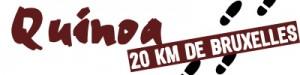 20km-300x75