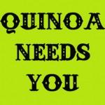 quinoafinal2