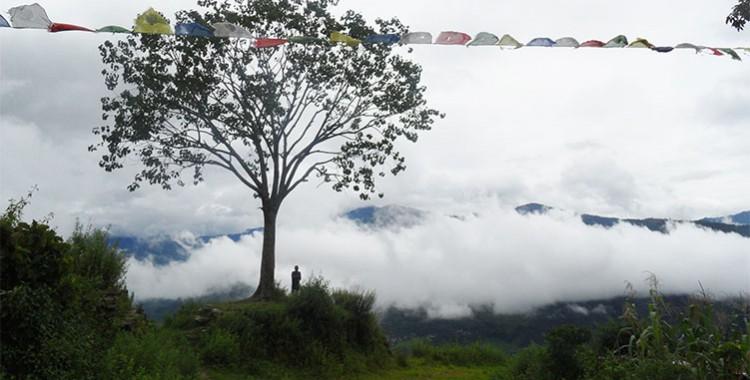 Appel à soutien de notre partenaire local CWIN au Népal
