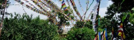 Rencontre - Népal, une nouvelle Constitution sous tension 10/12