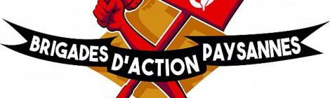 Offre de stage - chargé-e de projet BAP